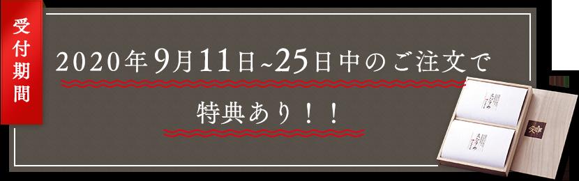 2020年3月4〜23日までの期間中にまとめて購入するとお得!!